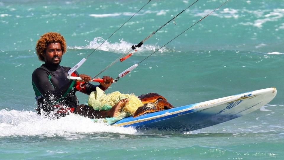Campeón-mundial-Kitesurfer-rescata-tortuga-marina.jpg