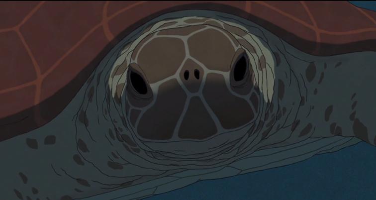 Imágen de la tortuga marina protagonista de la pelicula. Su caparazón es de color rojo