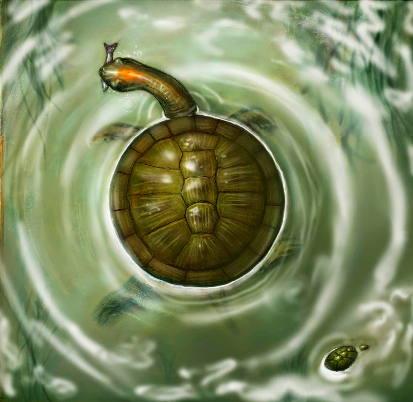 Cretacic Park: La Historia de las tortugas en Colombia