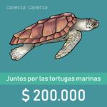 Botón de donaciòn de $200.000 con ilustraciòn de una tortuga caguama