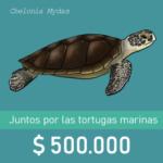 Botón de donaciòn de $500.000 con ilustraciòn de una tortuga verde